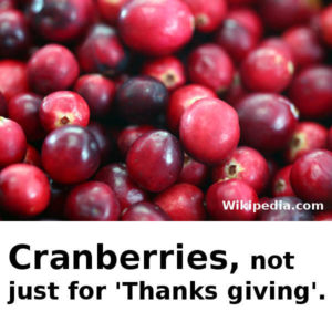 Learn about Cranberries.