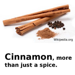 Cinnamon, more than a spice