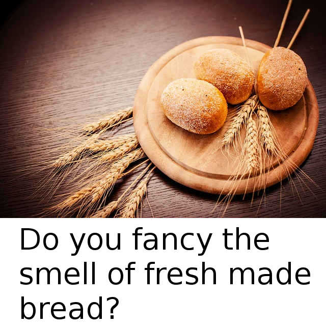 What ingredients do you need to make bread?